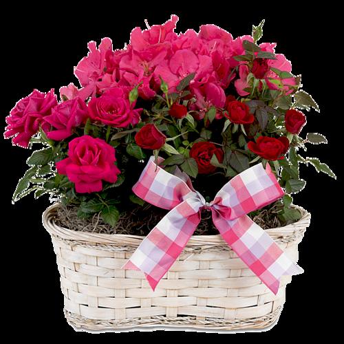Paniers fleuris 4
