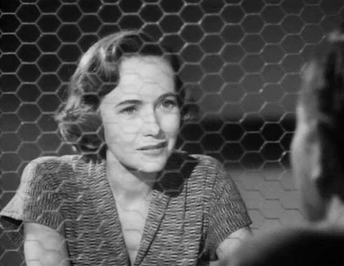 La dernière minute, Count the hours, Don Siegel, 1953