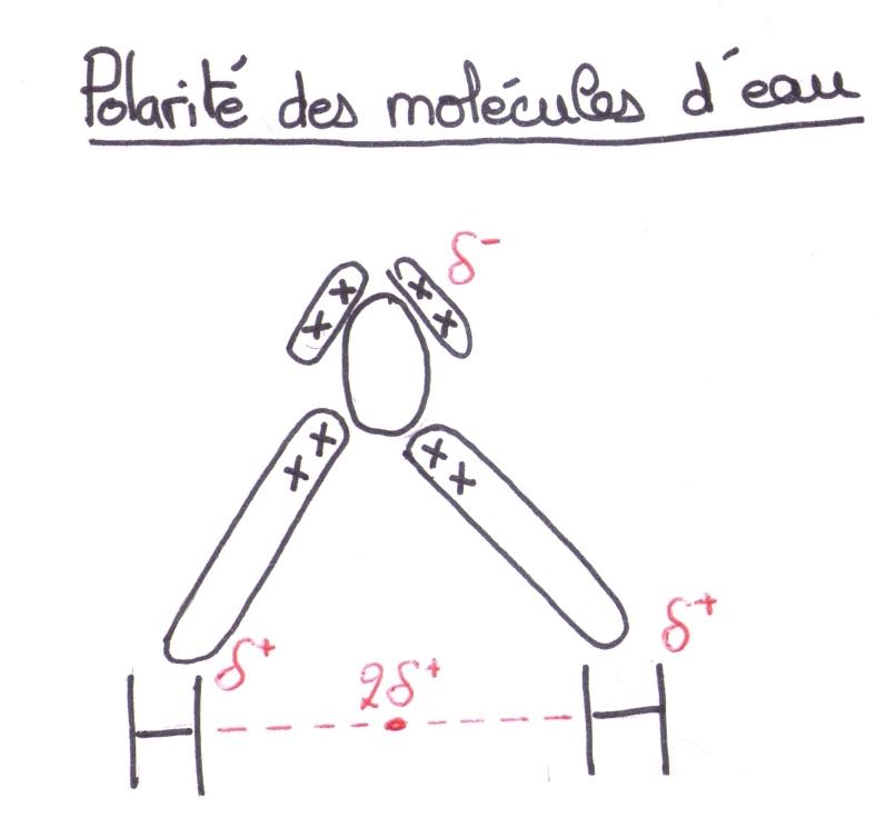 polarité définition chimie