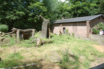 Zoo Duisburg 2012 749