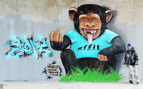 """Participation de Kiwi et Jerc """"ce n'est pas le plus fort de l'espèce qui survit"""" Darwin. Fresque à Valence (26) 21 novembre 2015 organisé par Sowan Tbmone sur le thème revisiter le slogan """"PRAY FOR PA"""