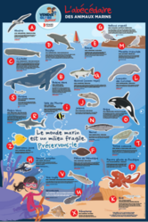 poster animaux VG