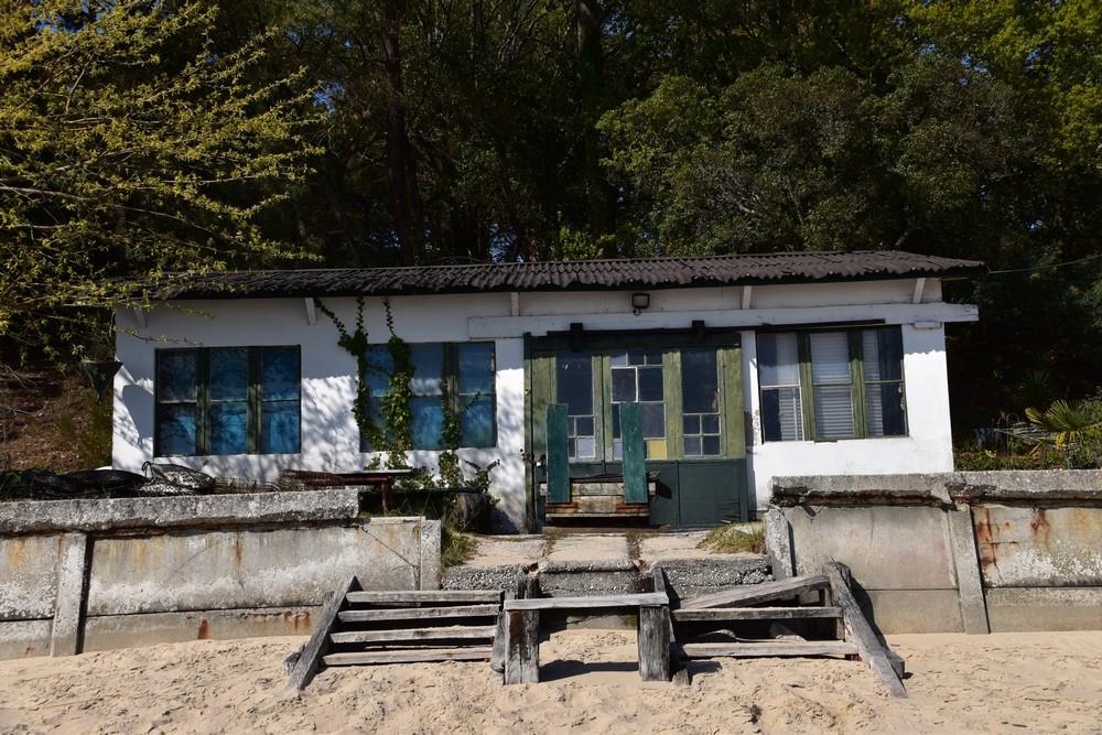 La petite cabane verte de Jane de Boy...