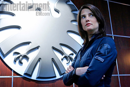 [COMIC CON 2013] SHIELD : Maria Hill, des retours, un ennemi, surprise...