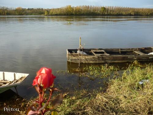 Mon petit coin de Loire