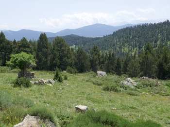 Des ruines pastorales au cours de la descente