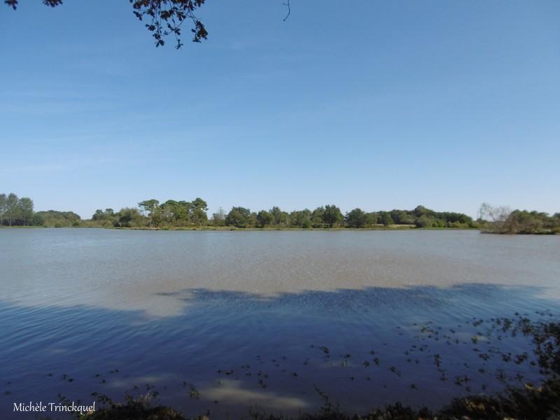 Une balade autour du Lac de Tastoa (ESTIBEAUX-POMAREZ 40), le 29 septembre (suite n°2 et fin)...