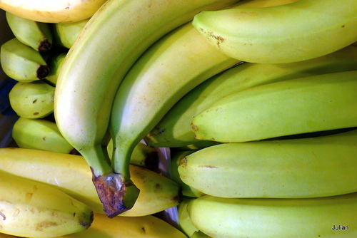 Qui aime les bananes ?