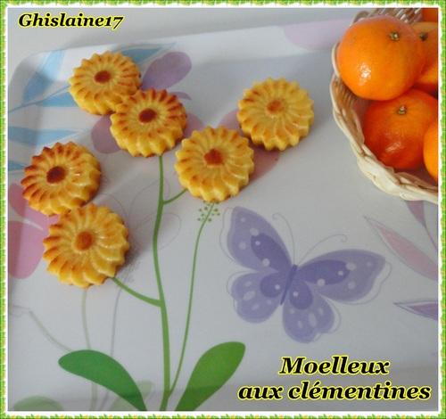 Moelleux aux clémentines