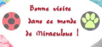 """Bannière """"Bonne visite"""" Miraculous ."""
