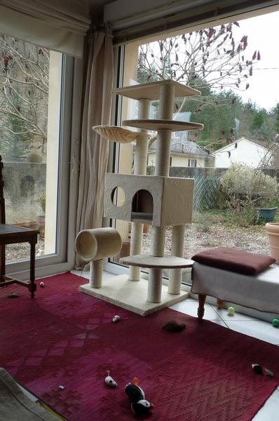 Nouvel arbre à chats :