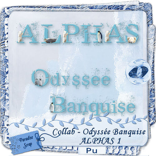 "Collab mega kit ""Odyssée Banquise"""
