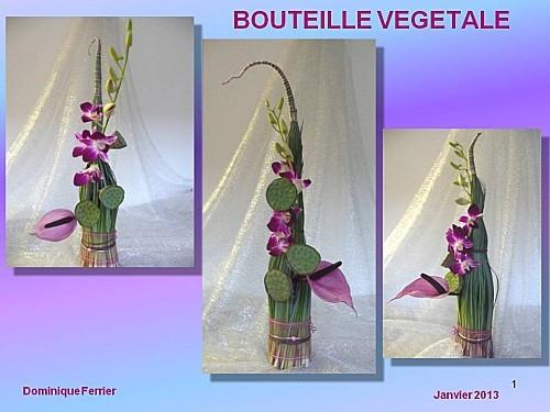 2013 01 bouteille végétale (1)
