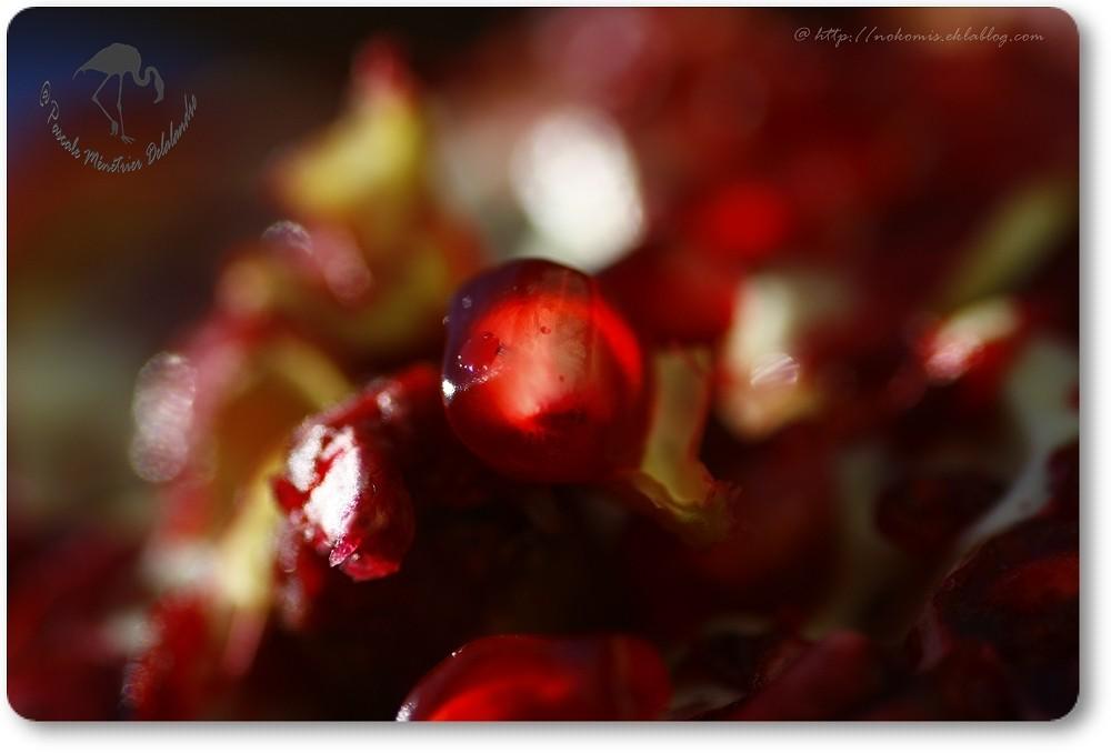 Rouge grenadine...