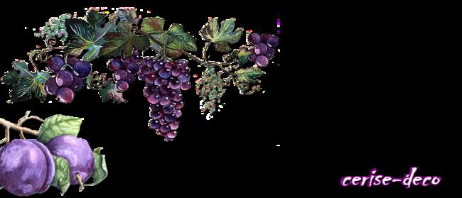 design bord de l'eau  et design fruits à l'automne