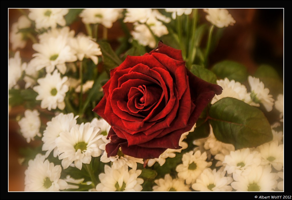 St Valentin à partager...