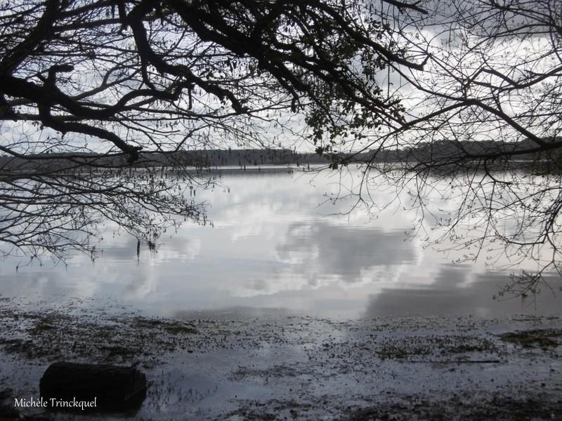 Une balade à l'Etang Blanc, le 12 février....