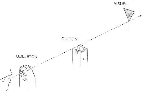chien viverrin. Black Bedroom Furniture Sets. Home Design Ideas