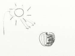 P2-S3 : représenter des ombres au fusain