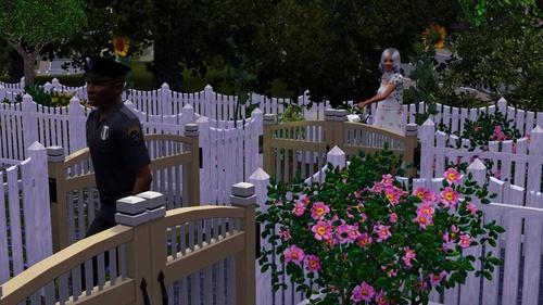 Chapitre 56: La clôture sert à rien et Cassie s'émancipe... ou pas.