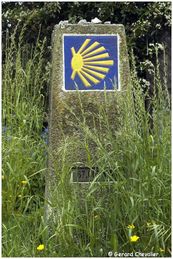 Camino para Fisterra # 9 - Negreira - Encore 67,009km.