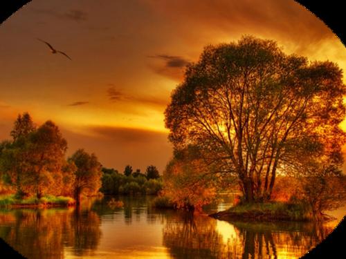 paysages d'automne !