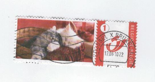 timbre-vignette-chat-belgique-2.jpg