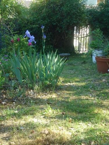 Promenade au jardin .....