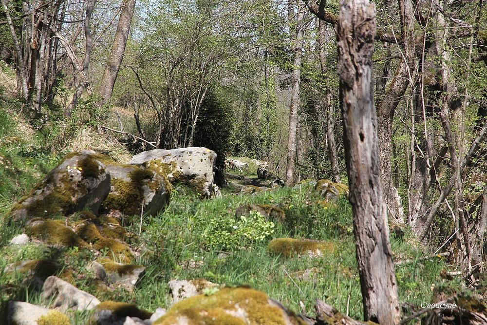 """Pyrénées-avril 2017 : randonnée dans le """"pays Toy"""""""