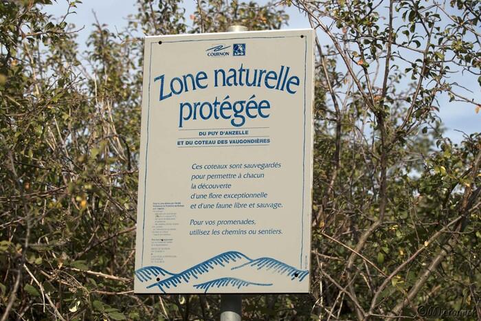 Balade sur le Puy d'Anzelle