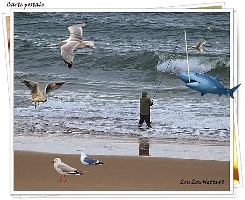 CARTES-POSTALE--N--9-jpg.jpg