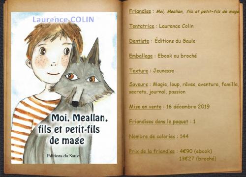 Moi, Meallan, fils et petit-fils de mage - Laurence Colin