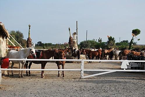 bato-richard-et-sortie-cheval-003.JPG