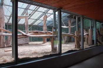 Zoo Saarbrücken 2012 148