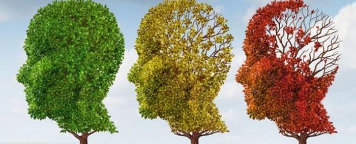 Médecine:  Alzheimer : Merck propose de traiter la maladie avec le verubecestat + vidéo