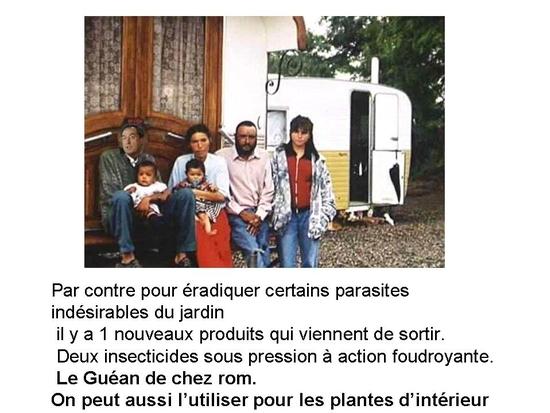 politique_et_jardinage_032