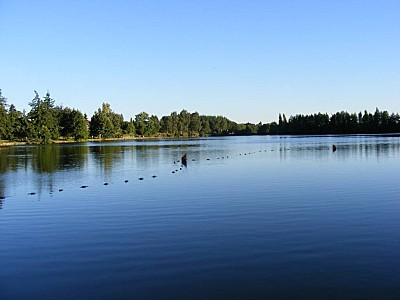Lac de pouzauges 1 (4)