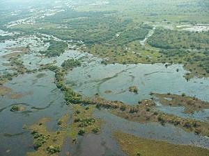 Pantanalimg