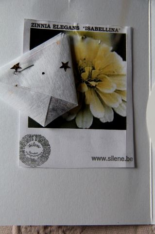 SOL 2020 - Missives fleuries (2)