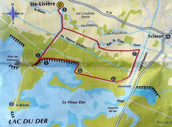 Randonnée au Lac du Der (troisième jour) : la presqu'île de Nemours