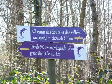 Le chemin des vallées et collines du Dour
