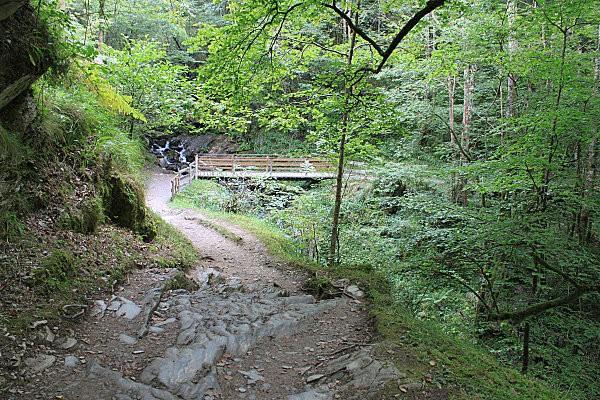 sentier d'Holzarte -3-