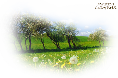 Mist printemps