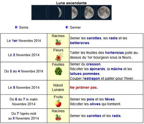 Calendrier lunaire de novembre