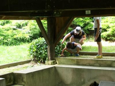 Blog de chipiron :Un chipiron dans les Landes, géocaching 2