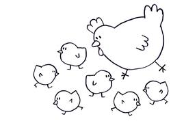 Le livre à compter des oiseaux