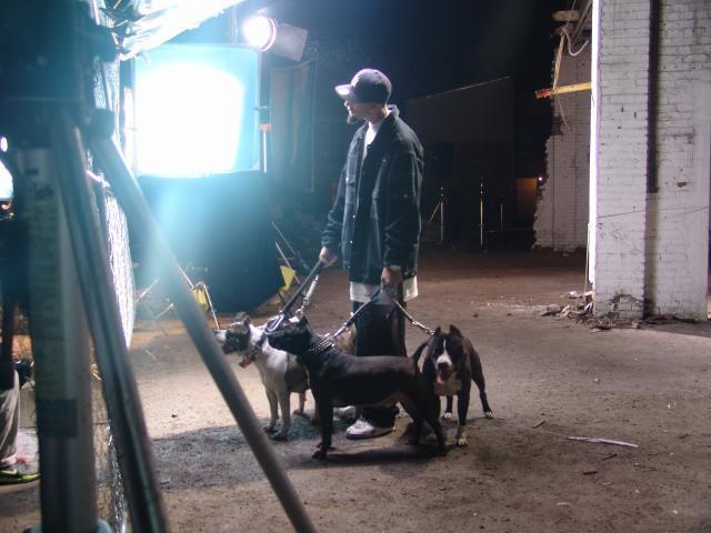 Le clip de Reste en chien bientôt dispo