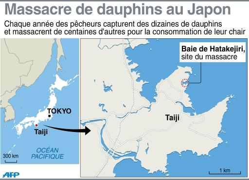 Japon: une trentaine de dauphins tués à Taiji