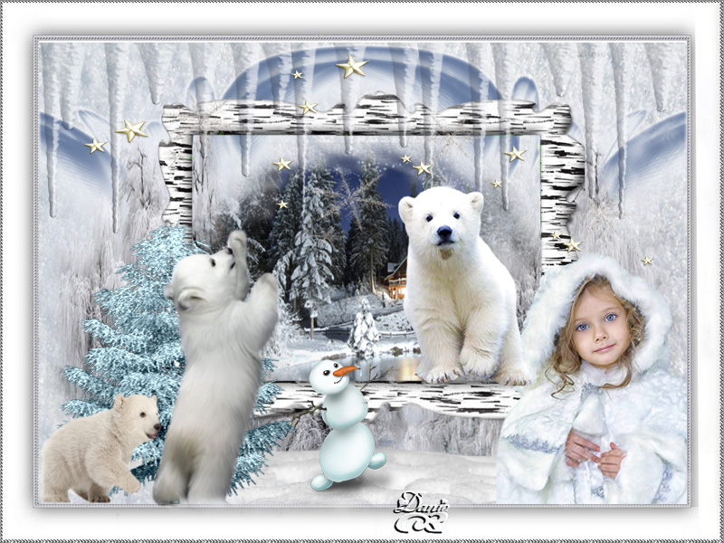 Défi Ours polaires pour Kalyona ...