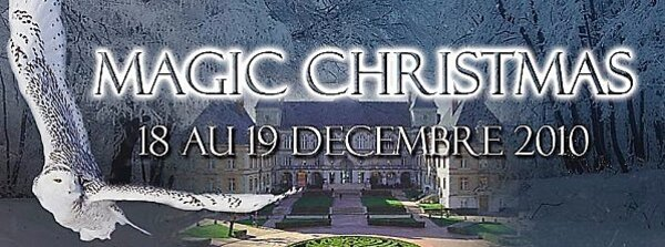 Magic Christmas banner 2